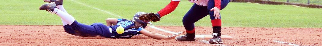 COLLECCHIO Baseball & Softball Club